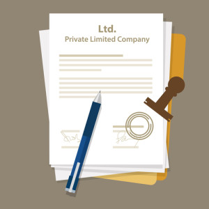 Limited company or soletrader accounts